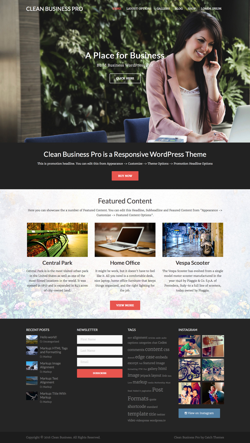 Clean Business Pro Homepage Screenshot