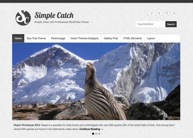 Simple Catch is a Simple WordPress theme | Free WordPress Themes