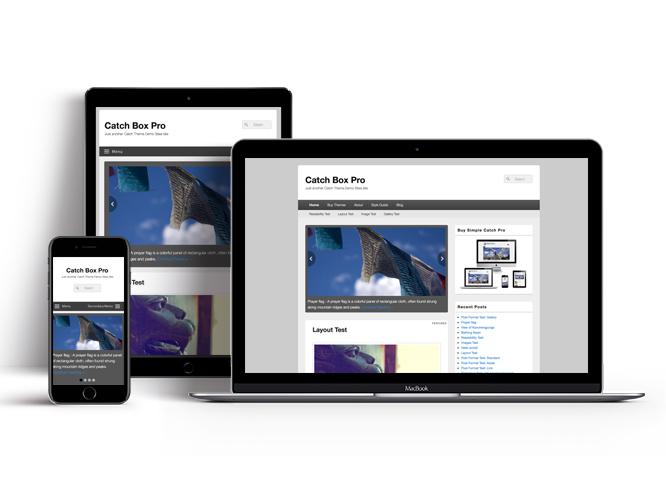 Super Catch Box Pro | Simple Box Shaped Premium Responsive WordPress Themes AZ86