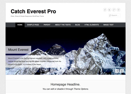 Catch Everest Pro