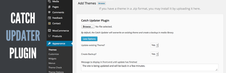 Catch Updater Plugin Image