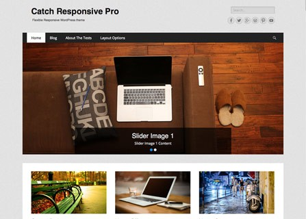 Catch Responsive Pro WordPress Theme