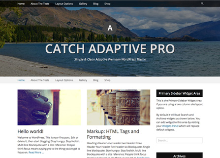 Catch Adaptive Pro WordPress Theme
