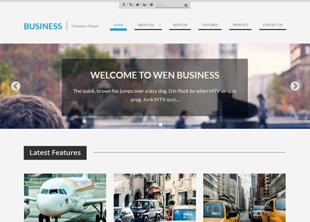 Web Business Theme