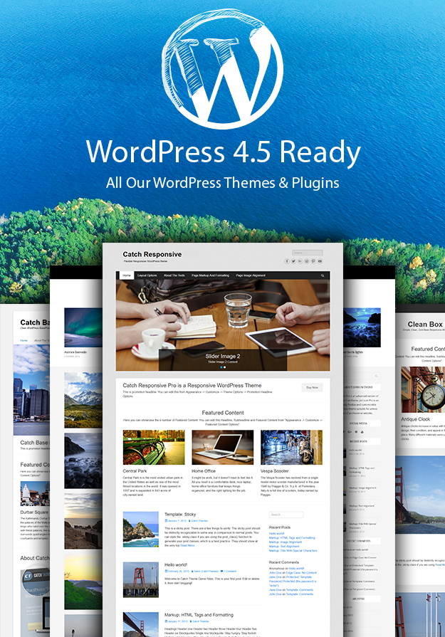 All Our Themes and Plugins are WordPress 4.5 ready