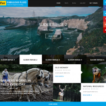 WordPress theme for Personal Websites