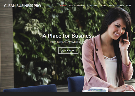 Clean Business Pro Screenshot