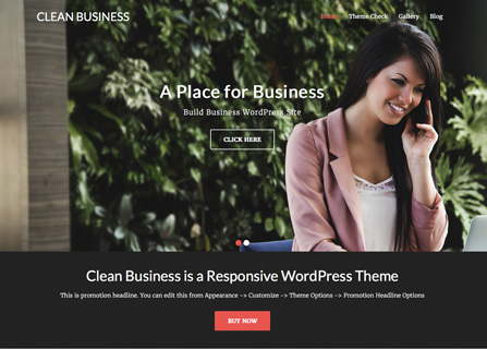 Clean Business Theme Screenshot