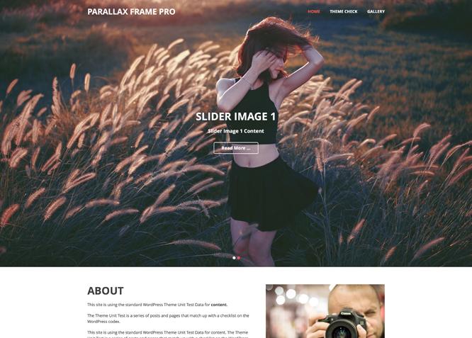 Parallax Frame Pro: Clean & Resposnive Parallax WordPress Theme