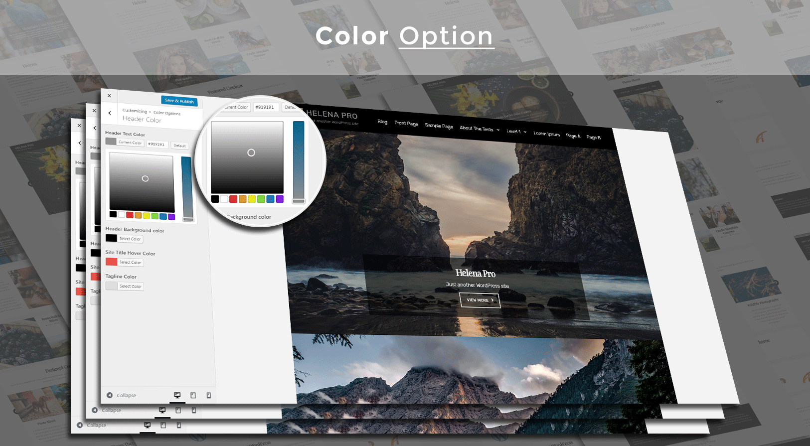color_options