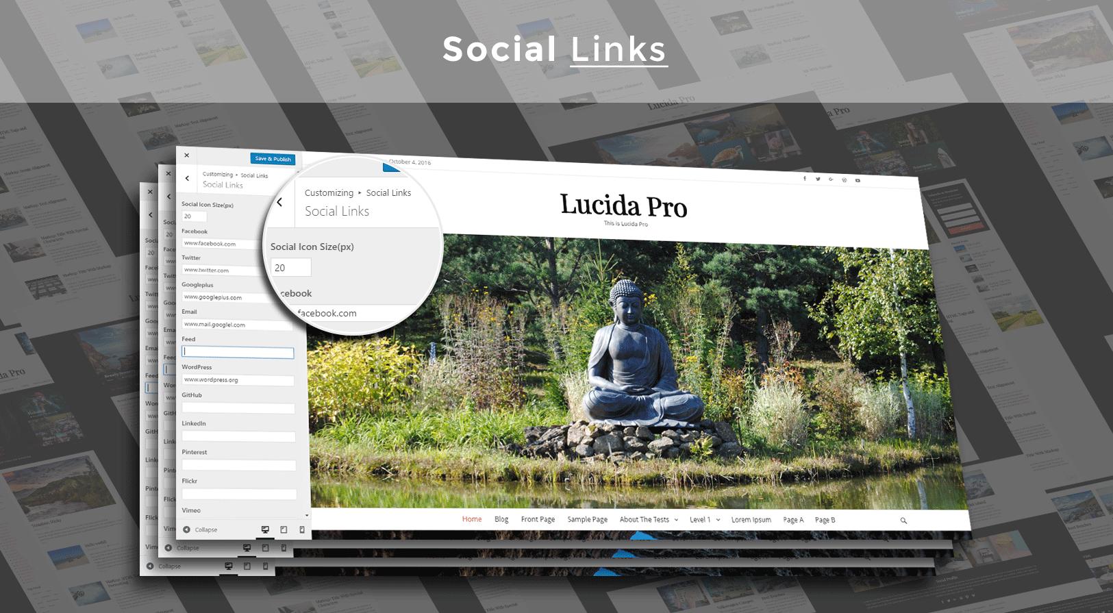 social_links