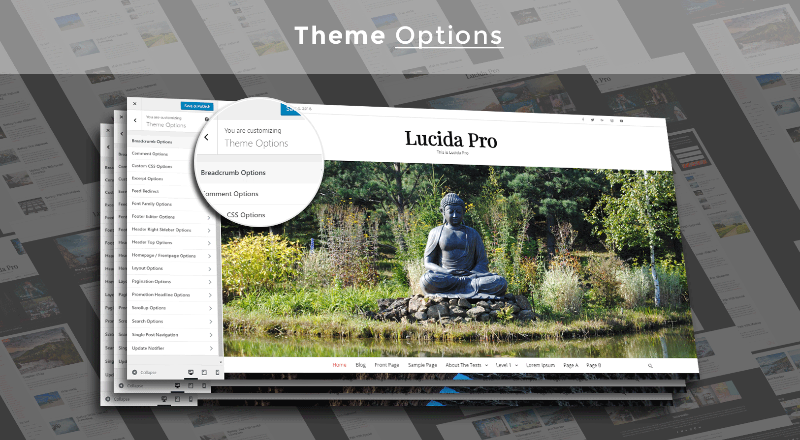 theme_options