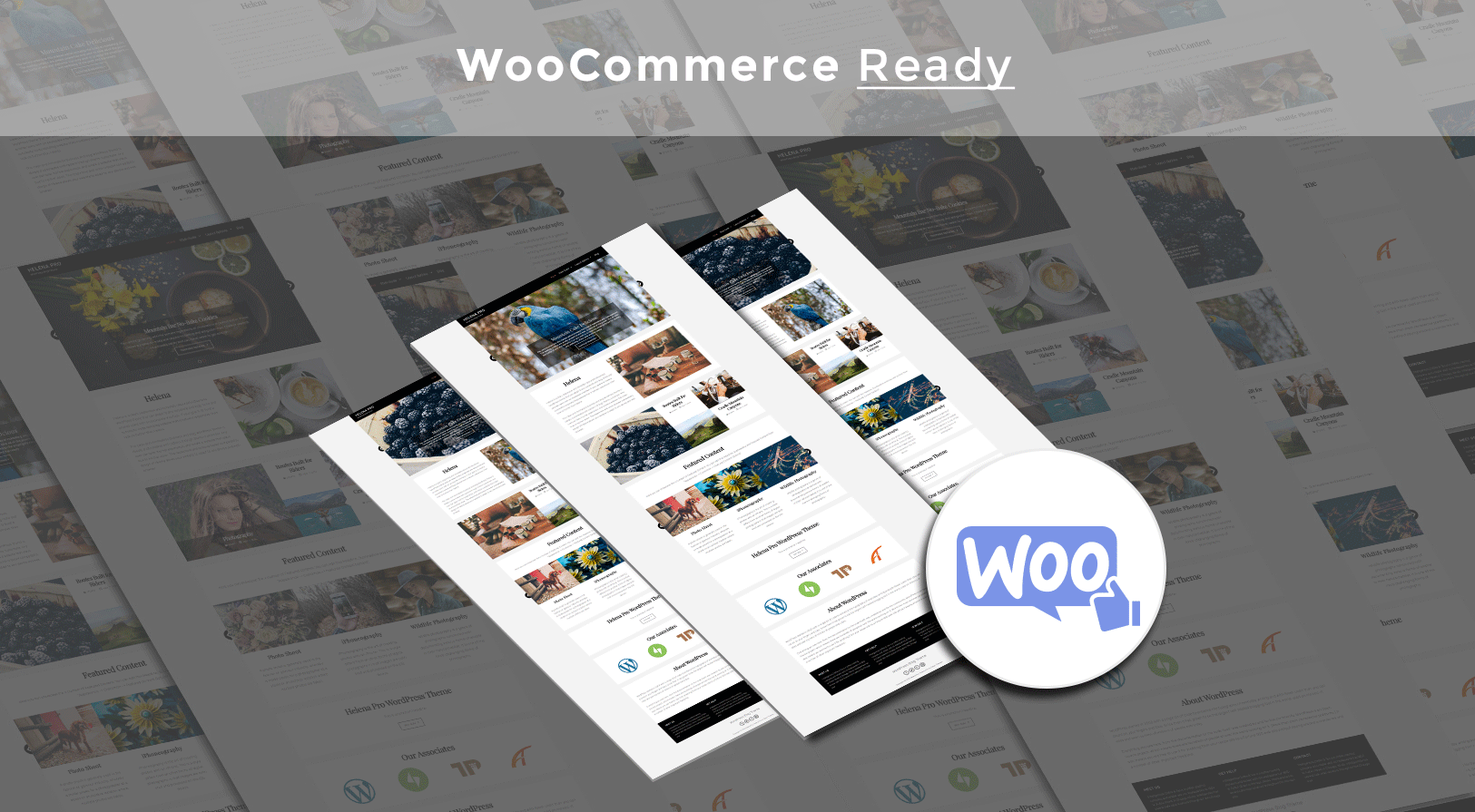 woocommerce_ready
