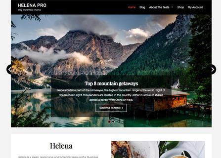 helena-pro-screenshot