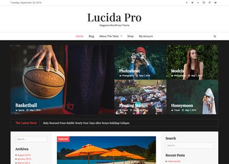 lucida-pro-screenshot
