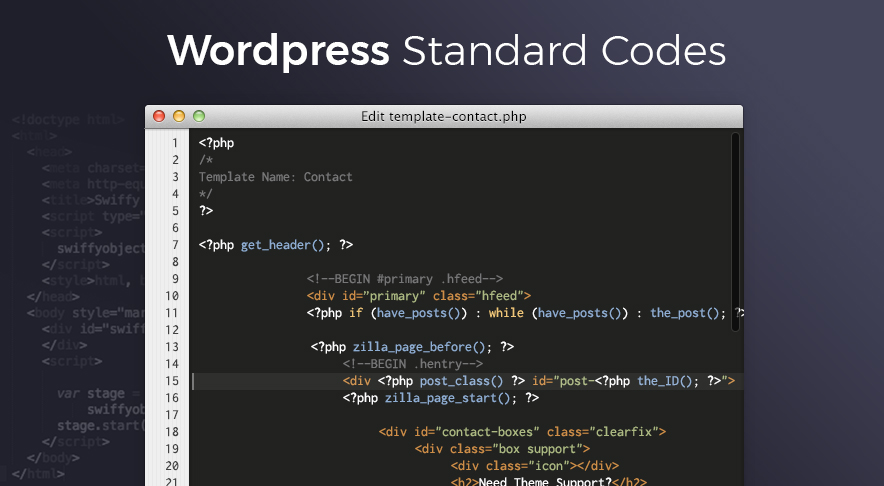WordPress Standard Coding Screenshot
