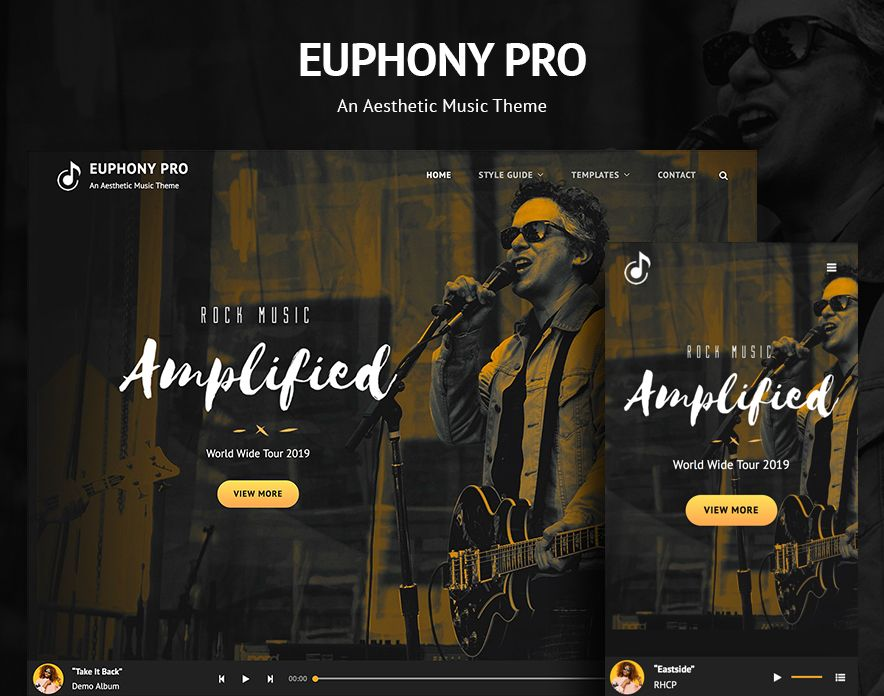 Euphony Pro – Our New Music WordPress Theme for Musicians