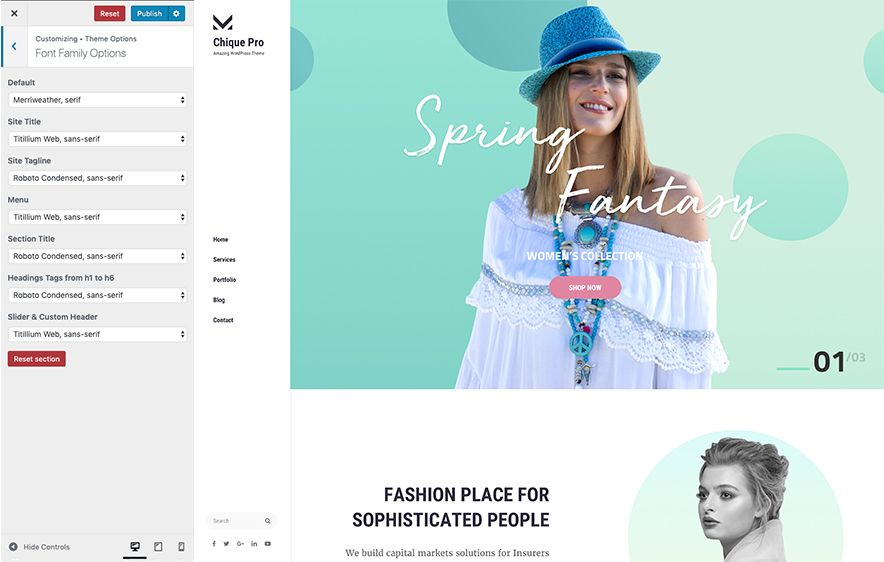 Font Family Module in Chique Pro Premium Fashion WordPress Theme