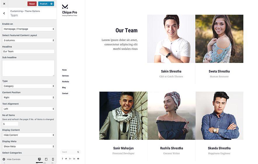 Team Module in Chique Pro Premium Fashion WordPress Theme