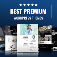 25 Best Premium WordPress Themes 2020