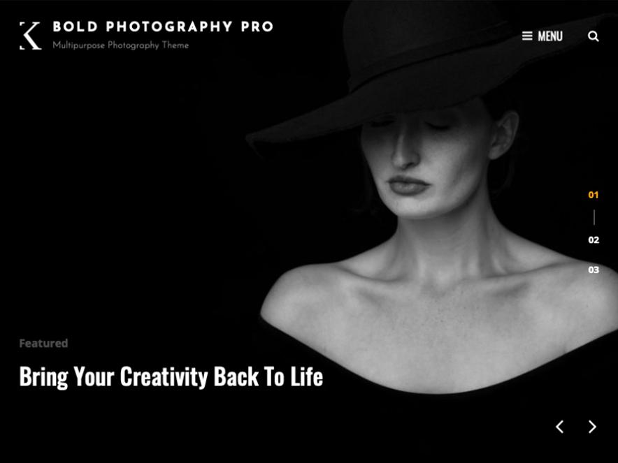 Bold Photography Pro - 10+ Premium and Free Photography WordPress Themes