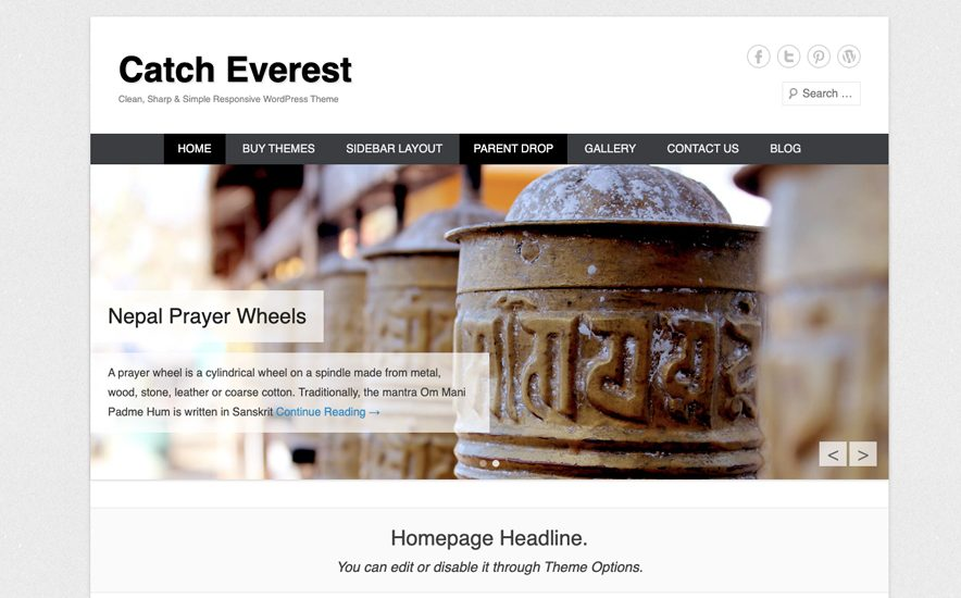 Catch Everest Theme -40+ Best Free Business WordPress Themes for 2020