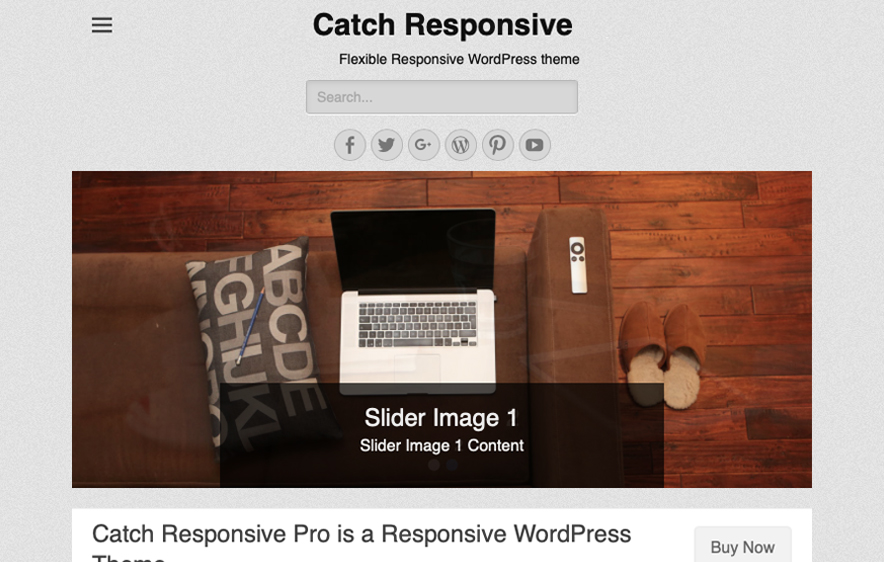 Catch Responsive Theme -40+ Best Free Business WordPress Themes for 2020
