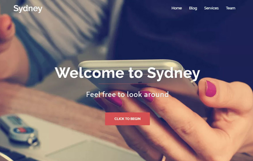 Sydney theme -40+ Best Free Business WordPress Themes for 2020