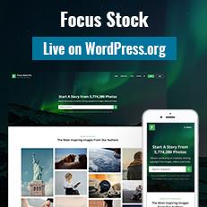 Focus Stock Theme Live on WordPress.org thumbnail