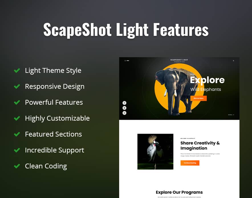 ScapeShot Light Features Image